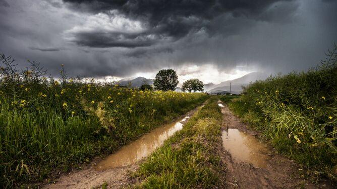 Pogoda na dziś: <br />deszczowo w wielu regionach kraju