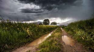 Pogoda na dziś: deszczowo w wielu regionach kraju