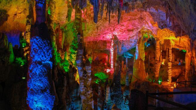 """""""Łowcy wirusów"""" badają nietoperze. <br />Szukają w jaskiniach koronawirusów"""