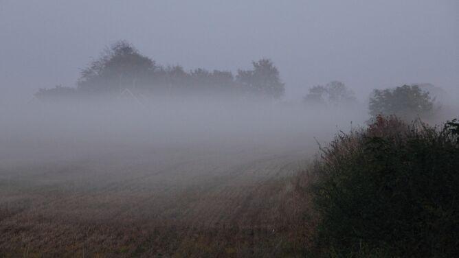 Gęsta mgła wciąż unosi się nad Polską. IMGW ostrzega